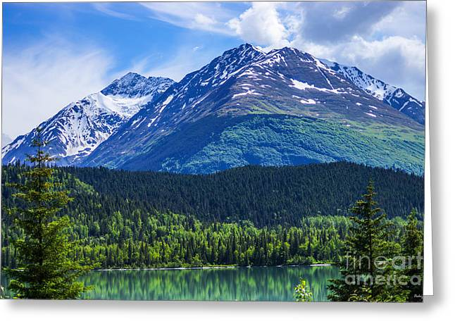 Snow Tree Prints Greeting Cards - Alaska Scenic Byway Mountain Greeting Card by Jennifer White