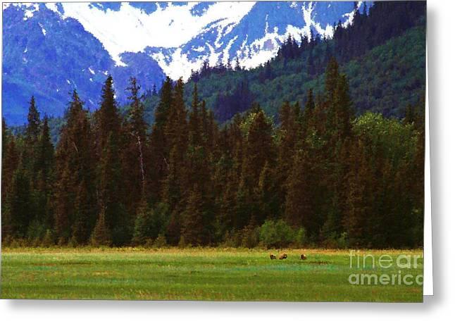 Alaska Lake Greeting Cards - Alaska  Greeting Card by Thomas R Fletcher