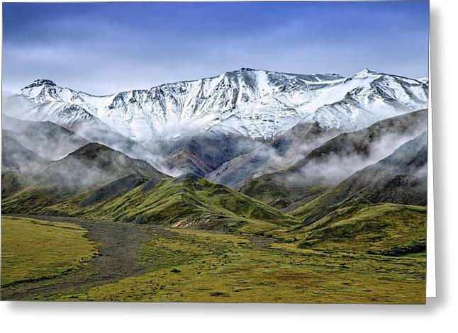 Denali Greeting Cards - Alaskan Dream Greeting Card by Rick Berk