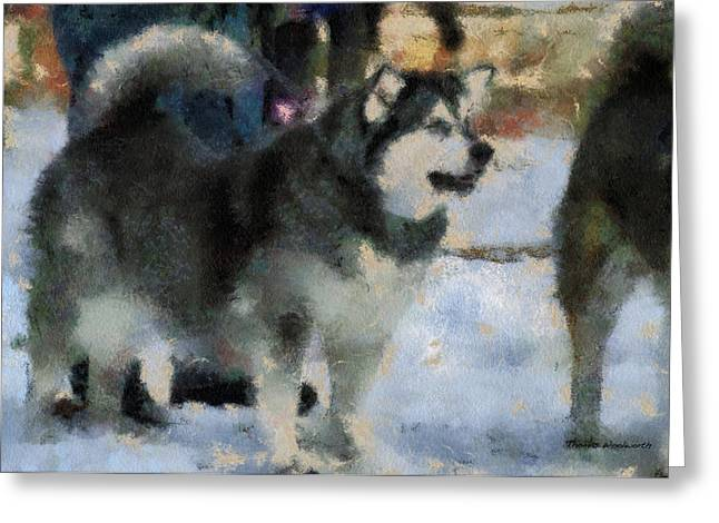 Dogs In Snow. Digital Art Greeting Cards - Alaskan Malamute Photo Art 03 Greeting Card by Thomas Woolworth