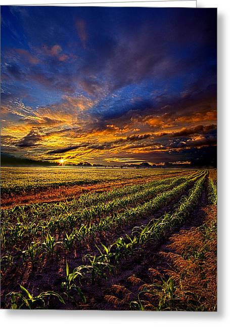 Geographic Greeting Cards - Alba Greeting Card by Phil Koch