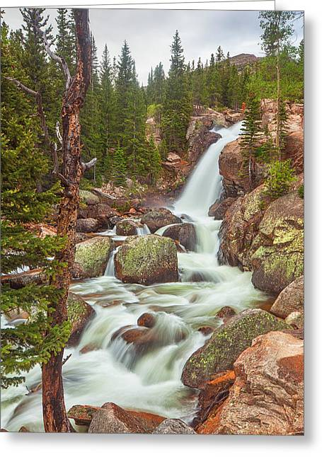 Rocky Mountains Greeting Cards Greeting Cards - Alberta Falls Greeting Card by Darren  White