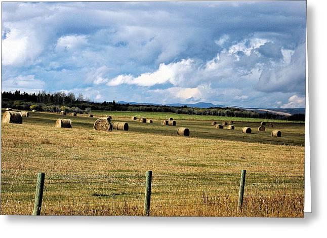 Alberta Foothills Landscape Greeting Cards - Alberta Foothills in Fall Greeting Card by Gerry Bates