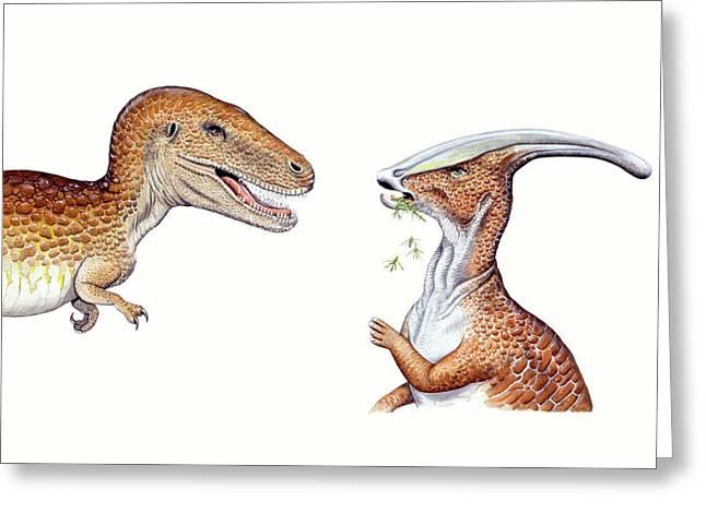 Albertosaurus And Parasaurolophus Greeting Card by Deagostini/uig