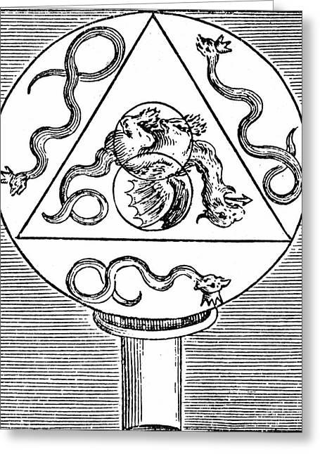 Alchemy Symbols Greeting Card by Universal History Archive/uig