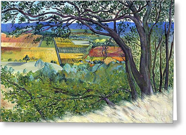 Sonoma County Vineyards. Greeting Cards - Alexander Valley Vinyards Greeting Card by Asha Carolyn Young