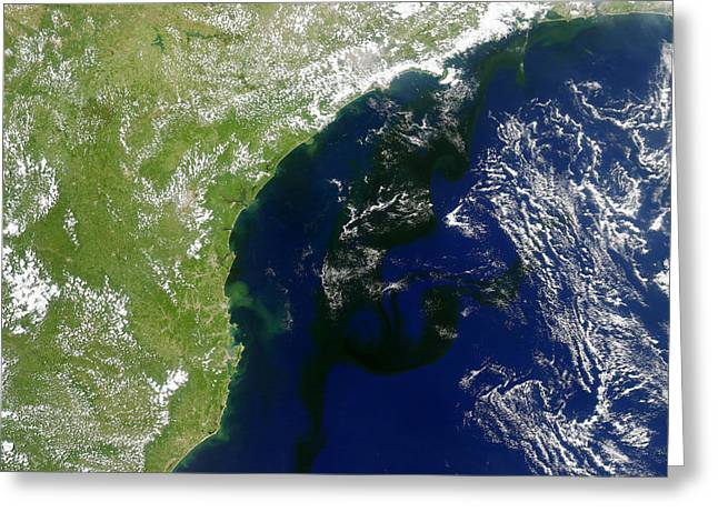 Algal Greeting Cards - Algal Bloom Off Brazil Coast Greeting Card by Science Source