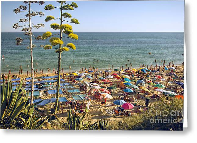 Algarve Greeting Cards - Algarve Beach Greeting Card by Carlos Caetano