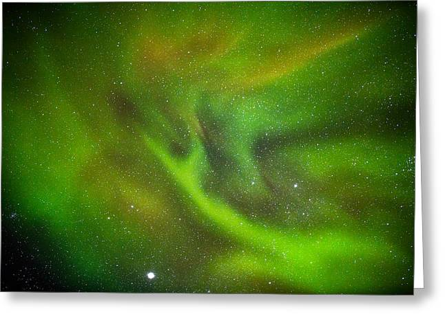 Color Green Greeting Cards - Alien Like Patterns In The Auroras Greeting Card by Panoramic Images