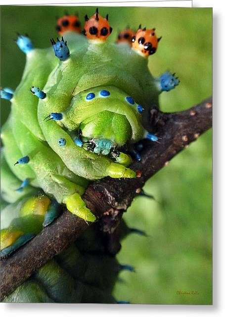 Alien Nature Cecropia Caterpillar Greeting Card by Christina Rollo