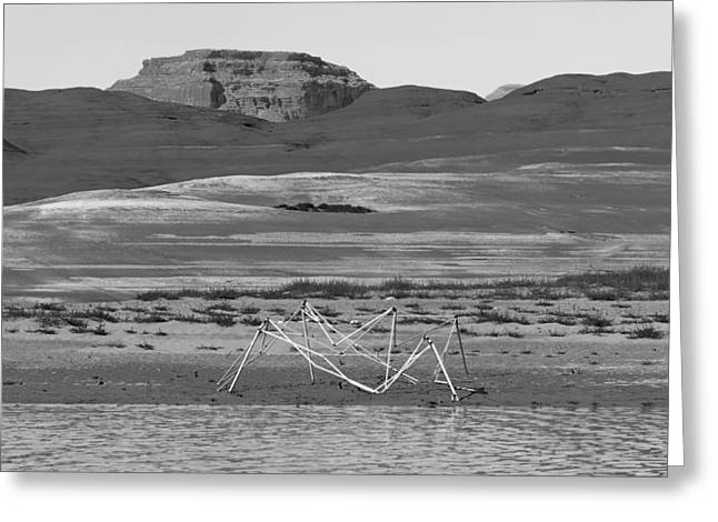Desert Lake Greeting Cards - Alien Wreckage BW - Lake Powell Greeting Card by Julie Niemela
