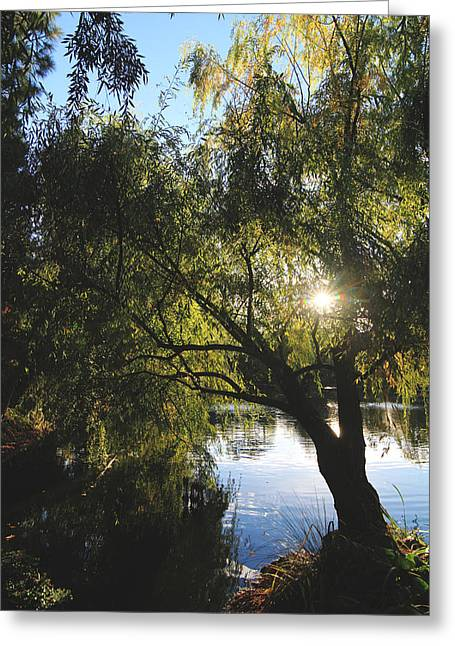 Chateau Greeting Cards - All Aglow Greeting Card by Laurie Search