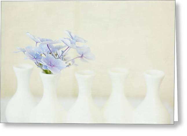 Tiny Whites Greeting Cards - All Alone Greeting Card by Bonnie Bruno