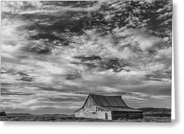 Prarie Greeting Cards - All Alone Greeting Card by Jon Glaser