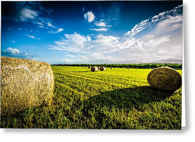 All American Hay Bales Greeting Card by David Morefield