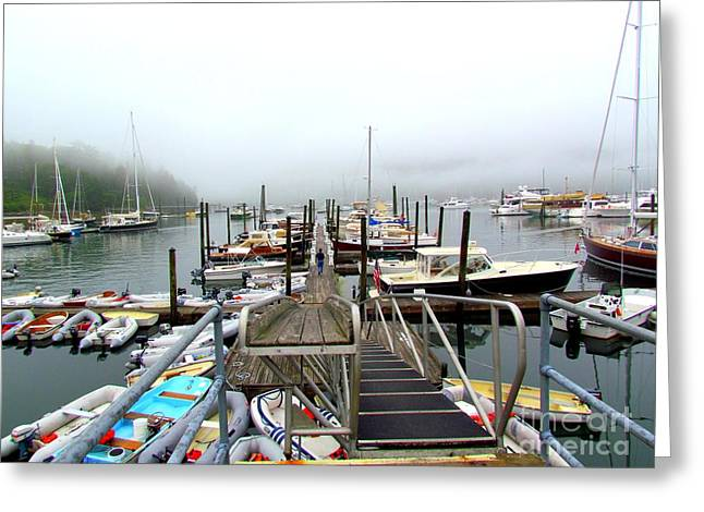 Somes Sound Greeting Cards - All Hands on Deck Greeting Card by Elizabeth Dow