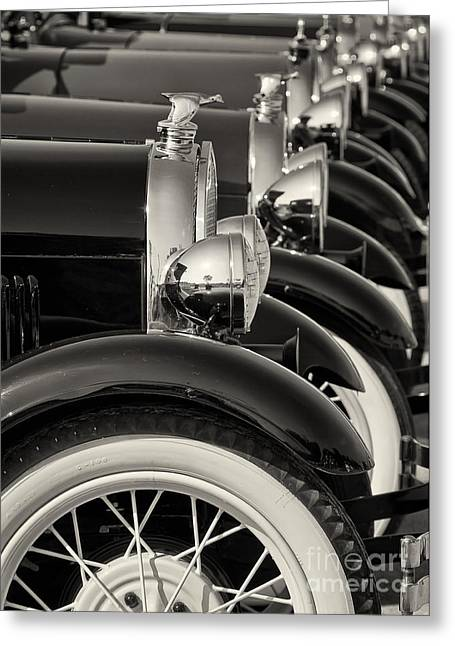 All Lined Up Greeting Card by Dennis Hedberg