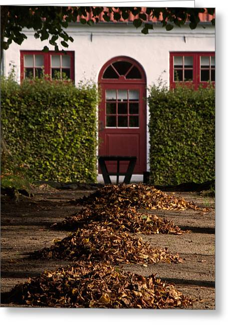 Fallen Leaf Greeting Cards - All Seasons Lead To Your Door Greeting Card by Odd Jeppesen