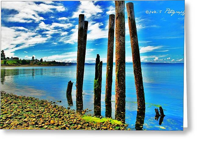 Steilacoom Greeting Cards - All That Remains Greeting Card by Tammy Caruthers