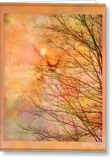 All The Colors Of The Moon Greeting Card by Linda Galok