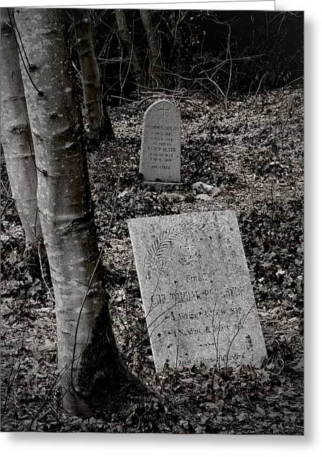 Headstones Greeting Cards - All Those Days Greeting Card by Odd Jeppesen