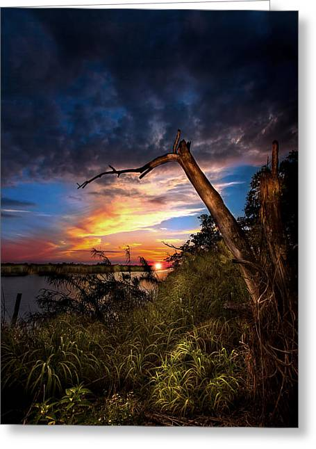 All Trails End Greeting Card by Mark Andrew Thomas