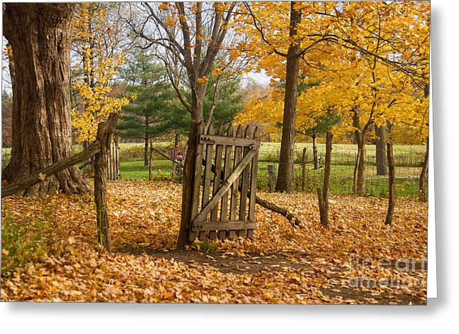 Indiana Autumn Greeting Cards - All Welcome Greeting Card by Lynne Dohner