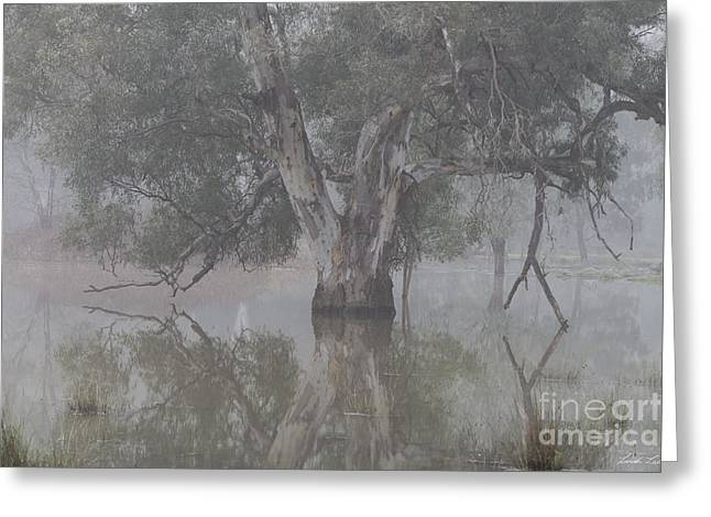 Reflecting Water Greeting Cards - All will become clear Greeting Card by Linda Lees