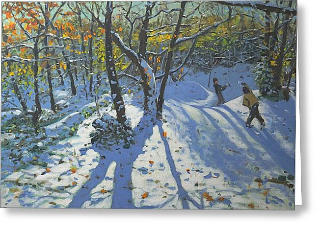 Snowball Greeting Cards - Allestree Park Woods November Greeting Card by Andrew Macara