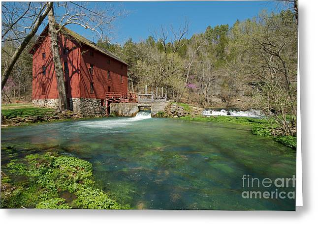 Red Bud Trees Greeting Cards - Alley Spring Mill Greeting Card by Chris  Brewington Photography LLC