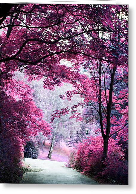 Alley Through Pink Woods Greeting Card by Jenny Rainbow