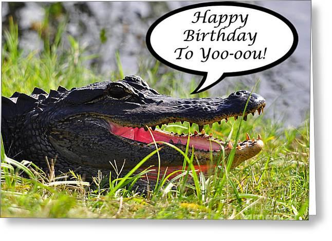 Florida Gators Greeting Cards - Alligator Birthday Card Greeting Card by Al Powell Photography USA