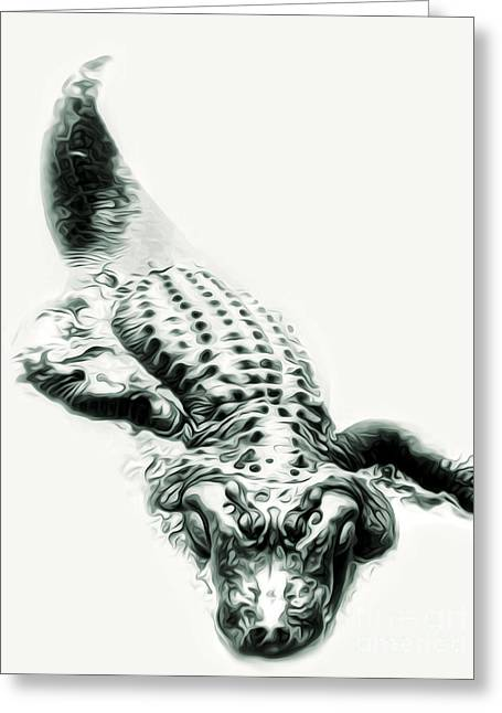Gregory Dyer Greeting Cards - Alligator Greeting Card by Gregory Dyer