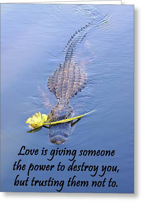 Value Greeting Cards - Alligator Quote Greeting Card by Rudy Umans