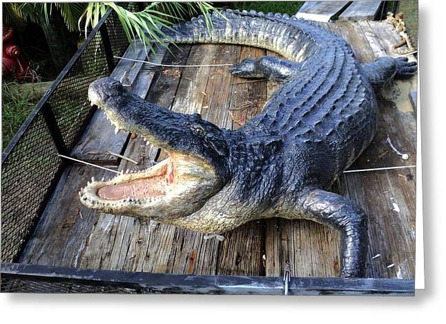 Reptiles Sculptures Greeting Cards - Alligator Sculpture 13 Ft Huge Greeting Card by Chris Dixon