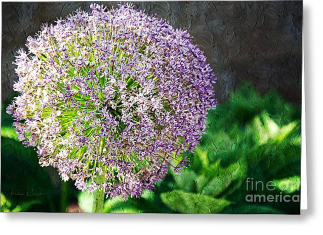 Allium Hollandicum Greeting Cards - Allium Hollandicum Purple Sensation Painterly Greeting Card by Andee Design