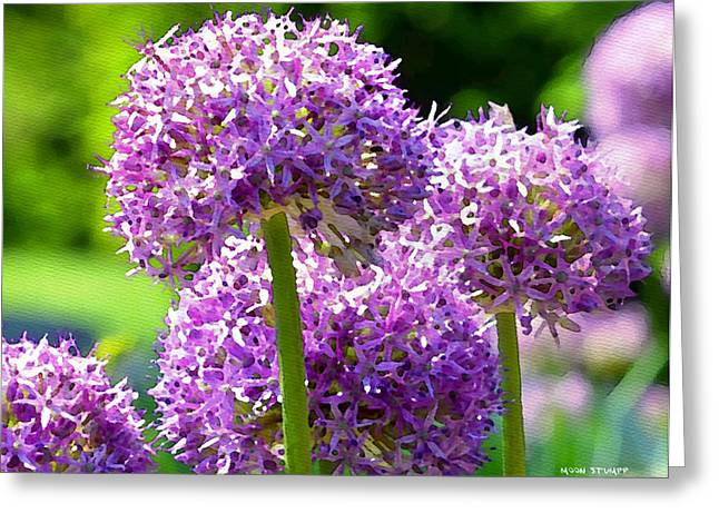 Fine Mixed Media Greeting Cards - Allium series - Bright Light Greeting Card by Moon Stumpp