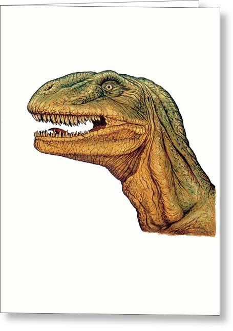 Allosaurus Dinosaur Head Greeting Card by Deagostini/uig