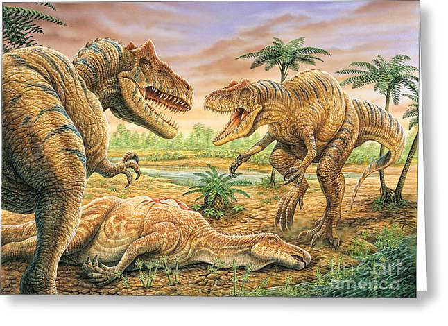 Phil Wilson Greeting Cards - Allosaurus Face-off Greeting Card by Phil Wilson