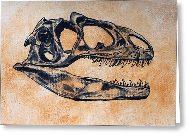 Dinosaur Greeting Cards - Allosaurus skull Greeting Card by Harm  Plat