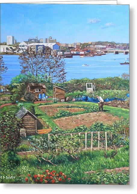 Shed Paintings Greeting Cards - Allotments at Southampton beside River Itchen Greeting Card by Martin Davey
