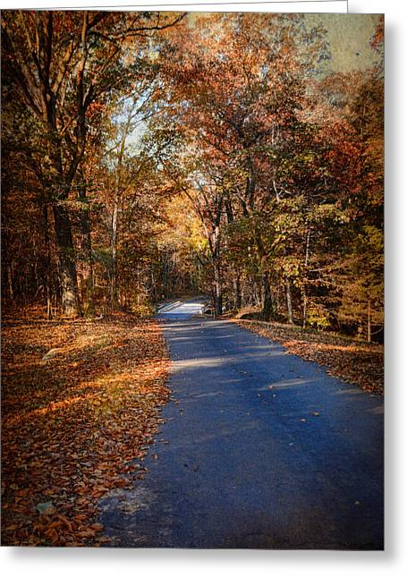 Autumn Scenes Greeting Cards - Allure of Autumn Greeting Card by Jai Johnson