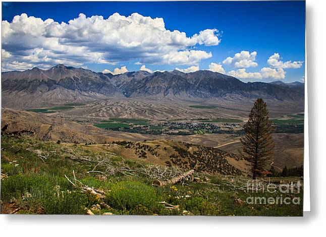 Alluvial Fan Greeting Card by Robert Bales