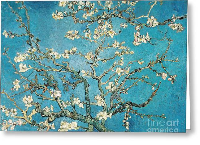 Flowers Posters Greeting Cards - Almond branches in bloom Greeting Card by Vincent van Gogh
