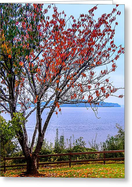 Puget Sound Framed Prints Greeting Cards - Almost Done Greeting Card by Cassius Johnson