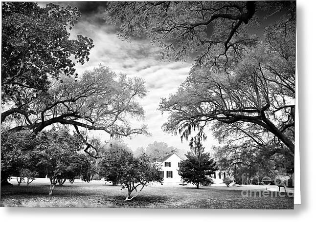 Historic Site Greeting Cards - Almost Home in Carolina Greeting Card by John Rizzuto
