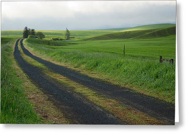 Gravel Road Greeting Cards - Almost Home Greeting Card by Mary Lee Dereske