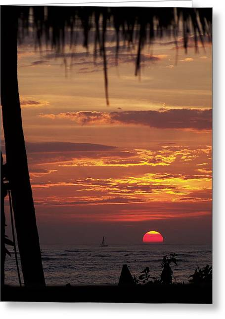 Energize Greeting Cards - Aloha Greeting Card by Karen Wiles