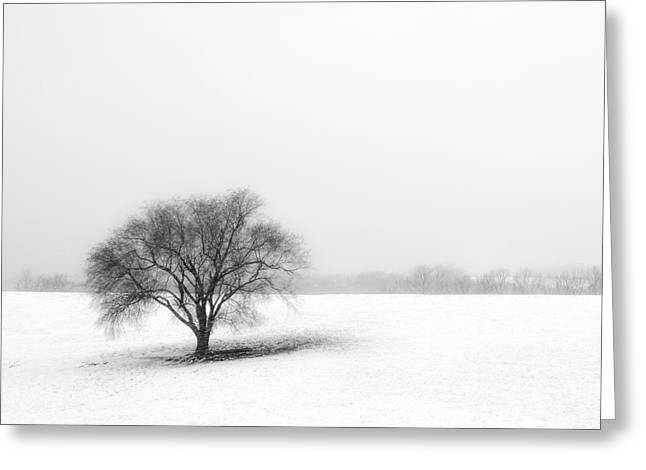 Snow Scenes Greeting Cards - Alone Greeting Card by Don Spenner