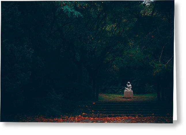 Canon 40d Greeting Cards - Alone Greeting Card by Eduina Jaupi